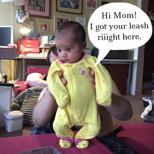 Joovy Boob - My Leash